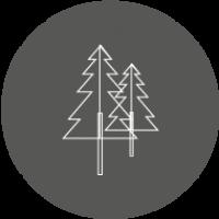 icono-forestal